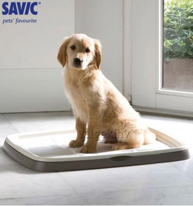 Komplekt kutsikale puhtuse õpetamiseks - Puppy trainer starter kit large (Savic)