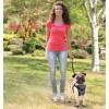 Traksid koerale turvaliseks autosõiduks ja jalutamiseks (AFP - Travel Dog)