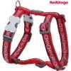 Traksid koerale, disainmustriga Cosmos Red (Red Dingo)