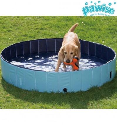 Bassein koertele (Pawise)