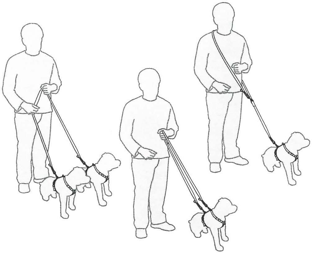 Mitmefunktsiooniline jalutusrihm koertele